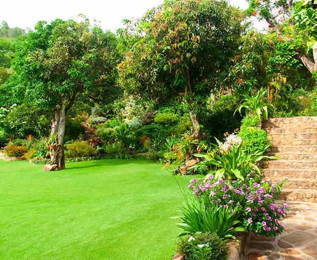 amenagement escaliers jardin